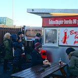 Pylsur stand, best hot dogs in Iceland in Reykjavik, , Iceland