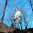 Tim Naples avatar image