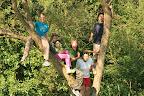 dnes jíme na stromě, jídelnu nám ukradli