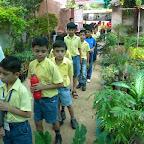 Field Trip to Nursery (Grade 3) 01.08.2016