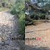 Belasan Tahun Rusak, Jalan di Kawasan Geopark Ciletuh Perlu Perbaikan