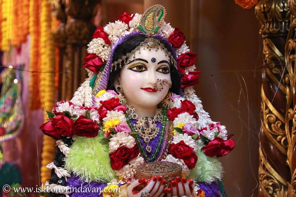 ISKCON Vrindavan Sringar Deity Darshan 15 Jan 2016  (2)