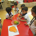 Introduction to Papaya (Playgroup) 16-9-14