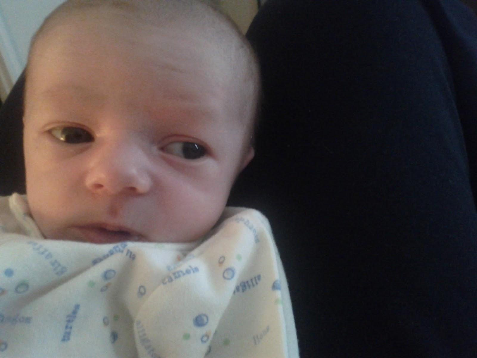 Meet Marshall! - IMG_20120531_141211.jpg