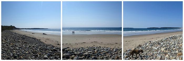 living beach