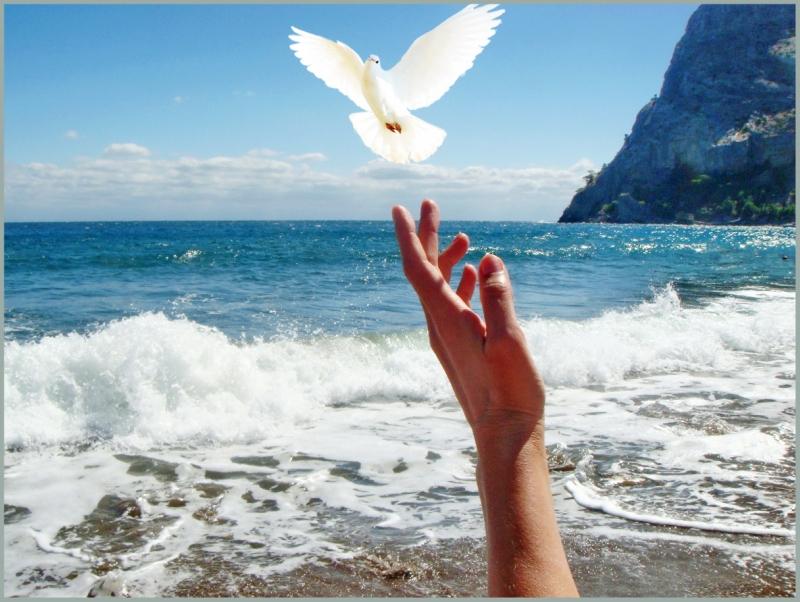 Медитация Освобождения от обид