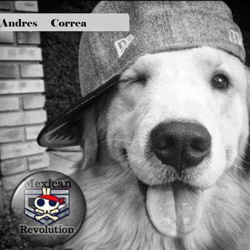 Andres Correa