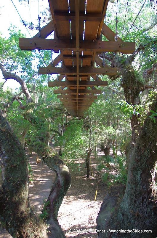 04-06-12 Myaka River State Park - IMGP9894.JPG