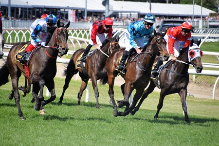 thousand guineas_finish 1