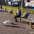 Holandia_JACKS PARADISE (29).jpg