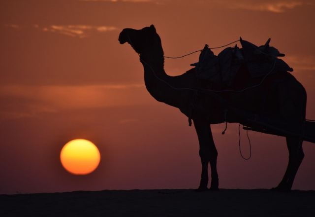 Sunset view in Jaisalmer
