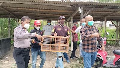 Kegiatan Lomba Burung Di Bekasi Dibubarkan Polisi