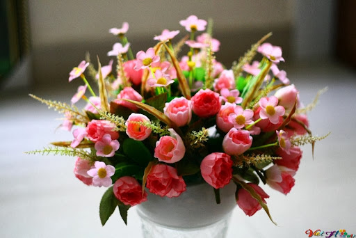 Giỏ hoa tulip tươi sáng căn phòng năm mới