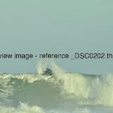 _DSC0202.thumb.jpg