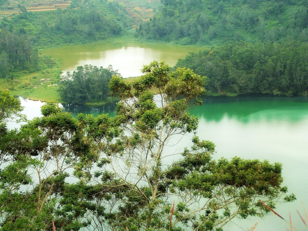 bass-ahmed-at-dieng-plateau-center-of-java-indonesia-2013-05-09-12-042