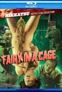 Chuyện Tình Trong Nhà Giam - Fairy In A Cage poster