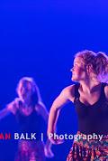 Han Balk Voorster Dansdag 2016-4039.jpg