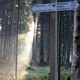 26. Juli 2016: On Tour zum Wolfsgarten bei Wülfersreuth - Schweinsbach%2B%252821%2529.jpg