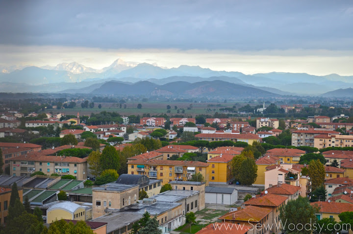Overlooking the town of Pisa, Italy
