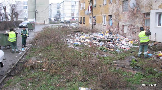 Curăţenia de toamnă 2009 - Picture%2B006.jpg
