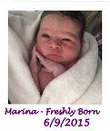 Welcome Marina