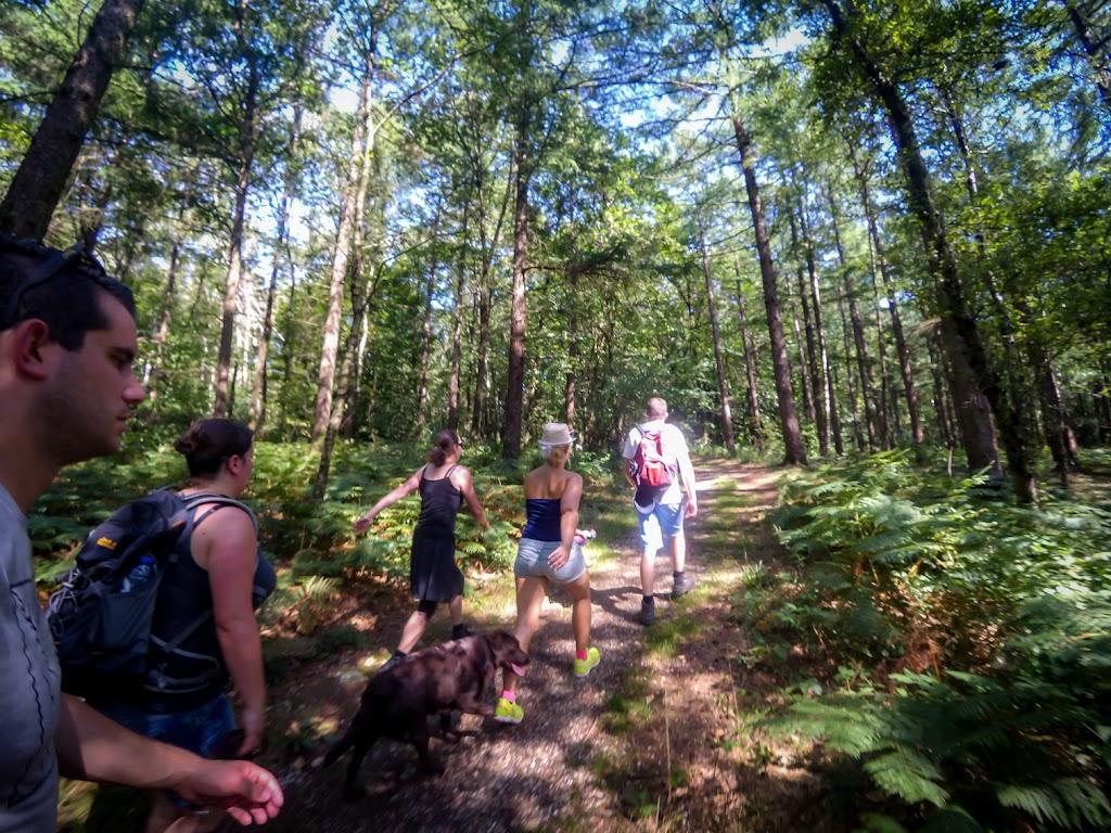 +Scouts wandeling-24