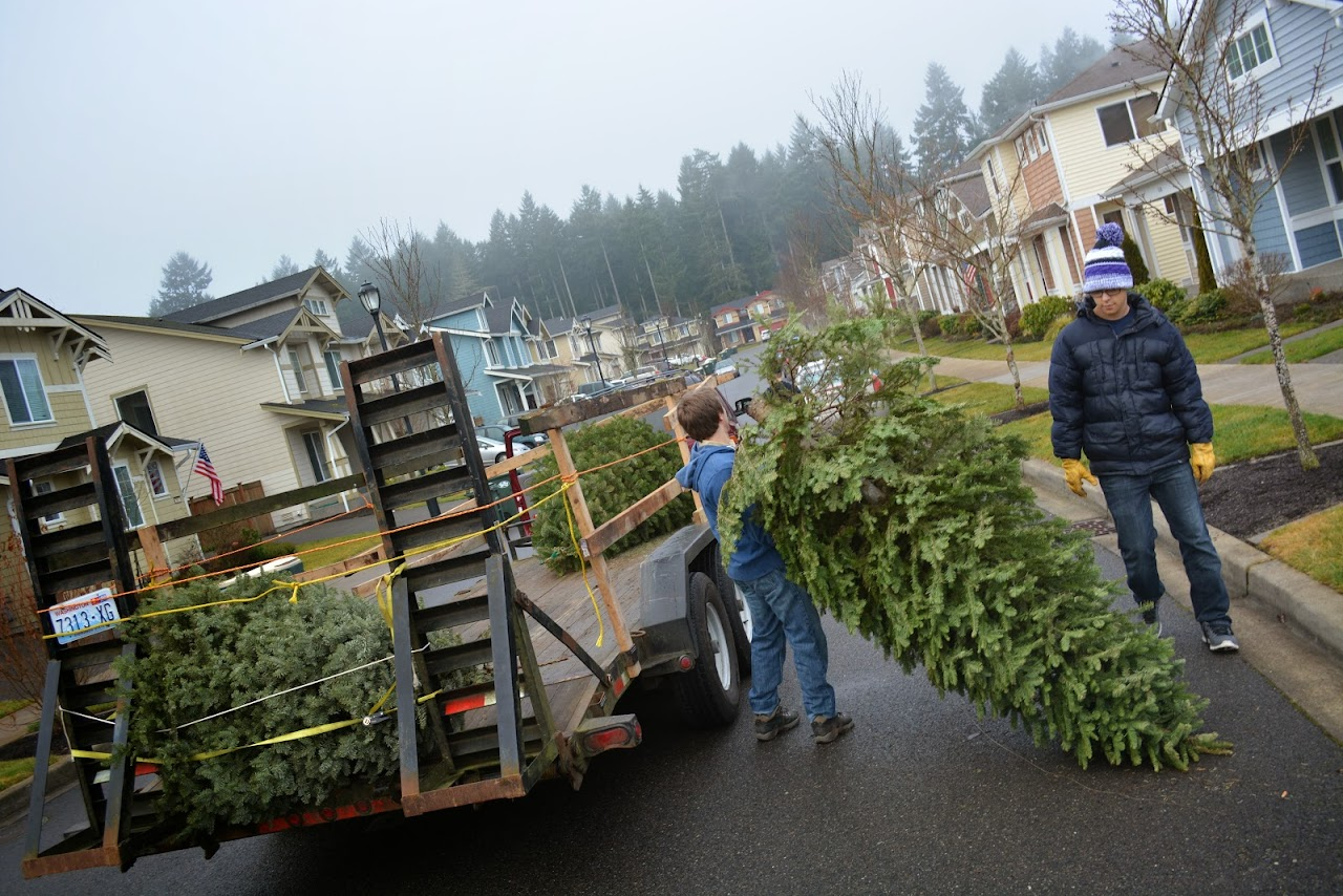 Christmas Tree Pickup 2014 - DSC_0067.jpg