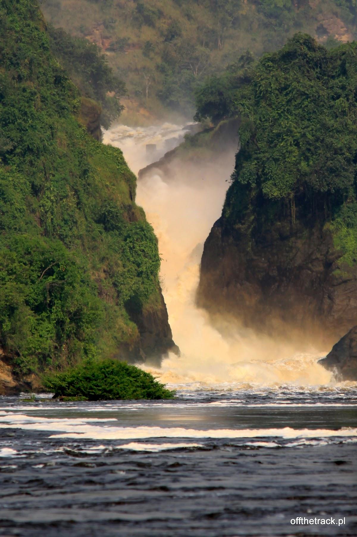 Wodospad Murchisona w całej okazałości, park narodowy Murchison Falls, Uganda