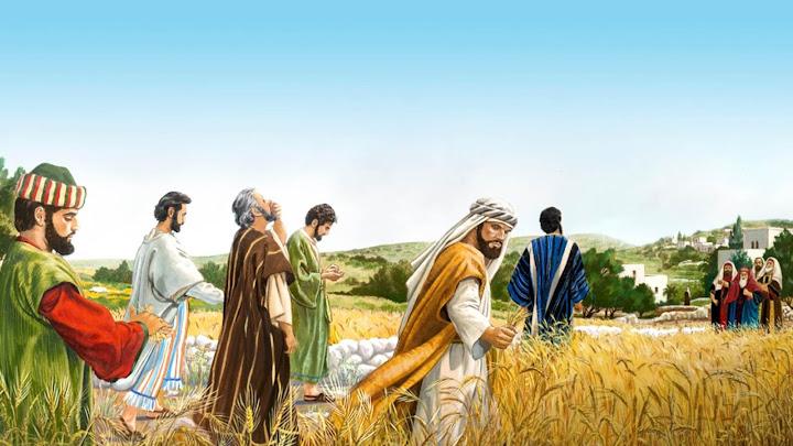 Con Người làm chủ ngày sabát (19.01.2021 – Thứ Ba Tuần 2 TN)