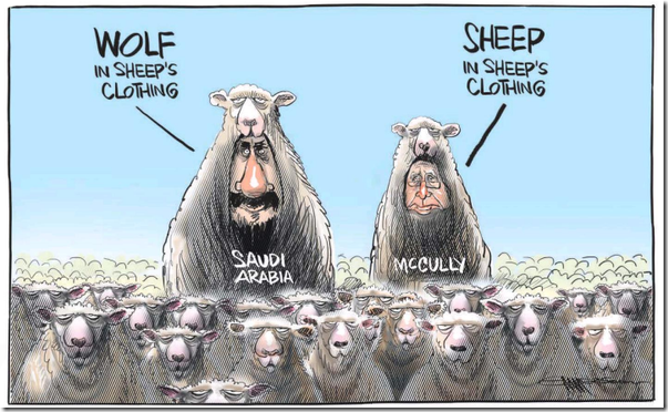 McCully-sheep-in-wolfs-clothing
