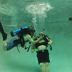 diving_2.jpg