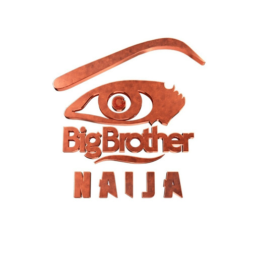 Big Brother Naija: Here are the details on auditions and venues