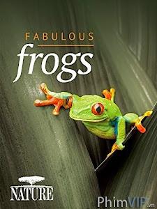 Thế Giới Loài Ếch - Bbc Natural World: Attenborough's Fabulous Frogs poster