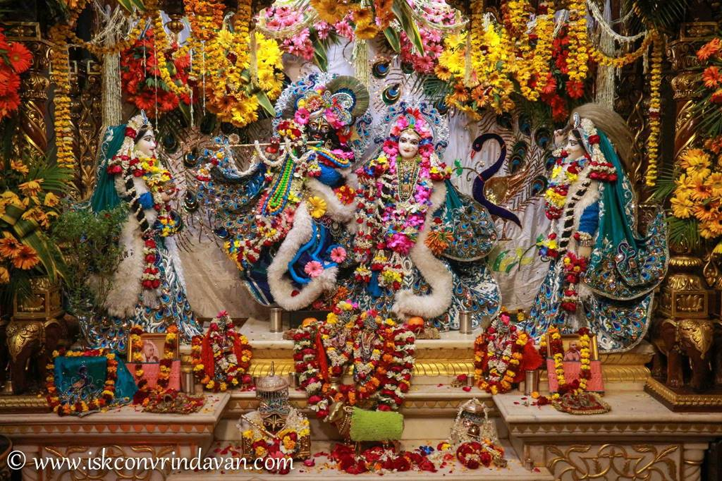 ISKCON Vrindavan Sringar Deity Darshan 25 Jan 2016 (8)