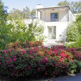 10-26-14 Dallas Arboretum - _IGP4284.JPG