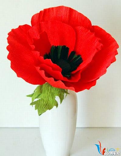 hoa anh túc màu đỏ từ giấy nhún