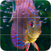 Animals Puzzle: Fishes