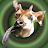 LonelyOkapi avatar image