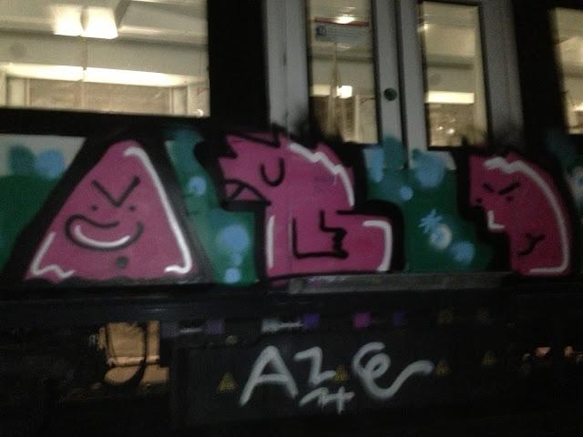 aze-pts-rn1 (28)