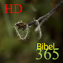 365 BibelHD icon