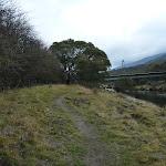 Riverside Track (295398)