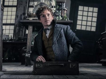 """Universo Harry Potter: próximo """"Animais Fantásticos"""" se passará no Rio"""