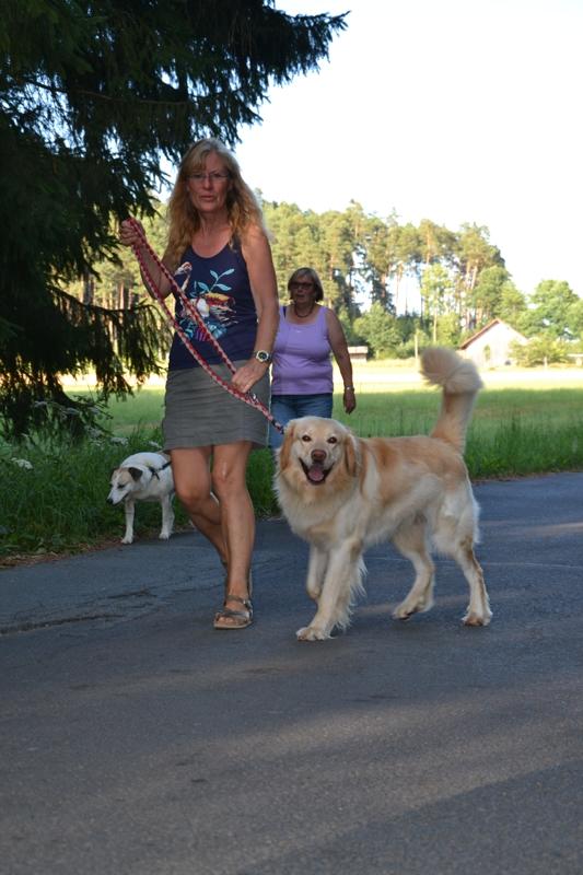 On Tour am Obersee bei Eschenbach: 21. Juli 2015 - DSC_0130.JPG