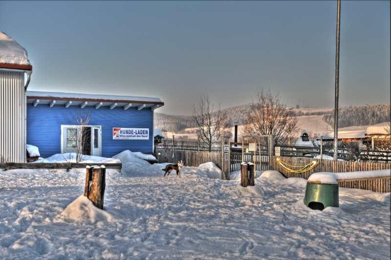 20110131 Winterliche Impressionen - Winter03.jpg