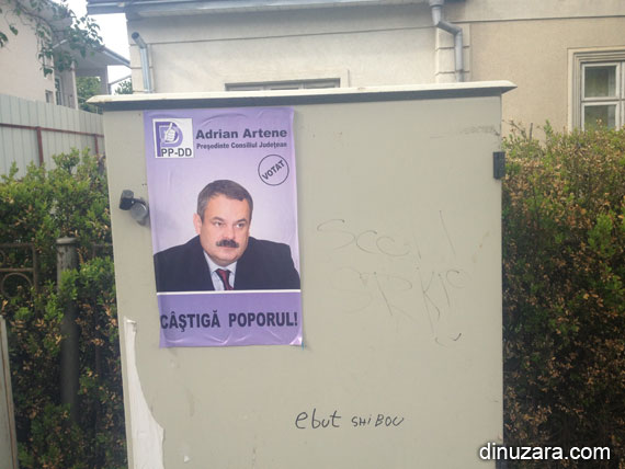 Afise electorale PPDD Suceava