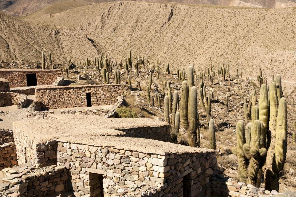 Cactus and Pucara Ruins, Tilcara, Jujuy, Argentina