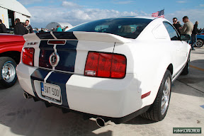 Modern Shelby 500