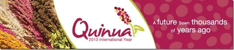 The-international-year-of-Quinoa