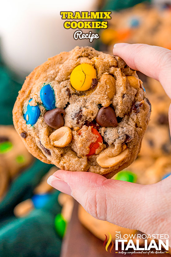 Trailmix Cookies being held in a hand