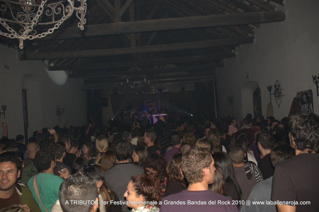 A TRIBUTOS 1er Festival Homenaje a Grandes Bandas del Rock 2010 - DSC_0061.jpg